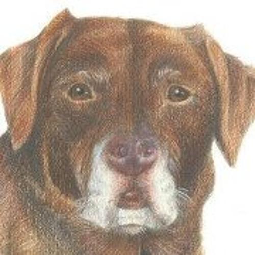 Rosie Whittaker's avatar