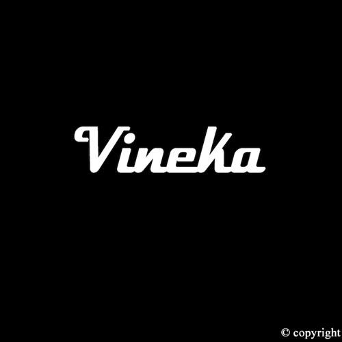 V I NΞ K Λ's avatar