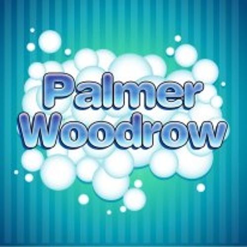 Dj Palmer Woodrow's avatar