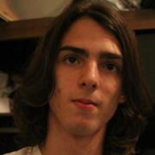 Luiz Felipe Martins 1's avatar