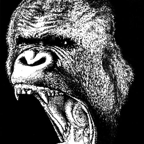 RawNoiseApes's avatar