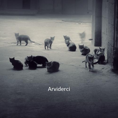 ArviDerci's avatar