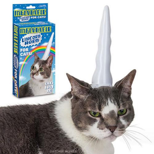 rabid cats's avatar