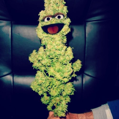 Weed heures's avatar