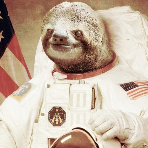 AstroSloth's avatar