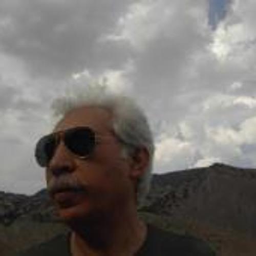 Ramin Emami's avatar