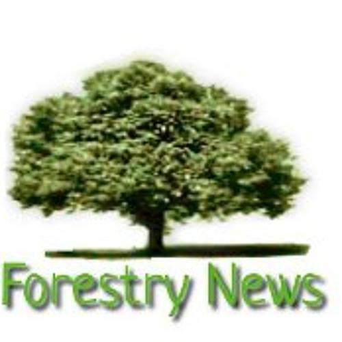Noticias Forestales's avatar