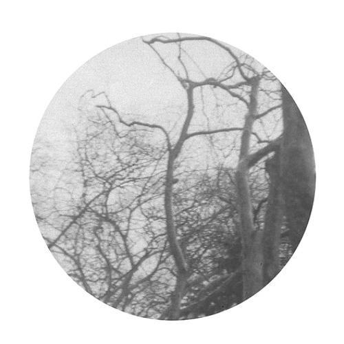 julia-nom's avatar