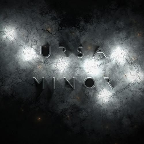 theursaminorproject's avatar