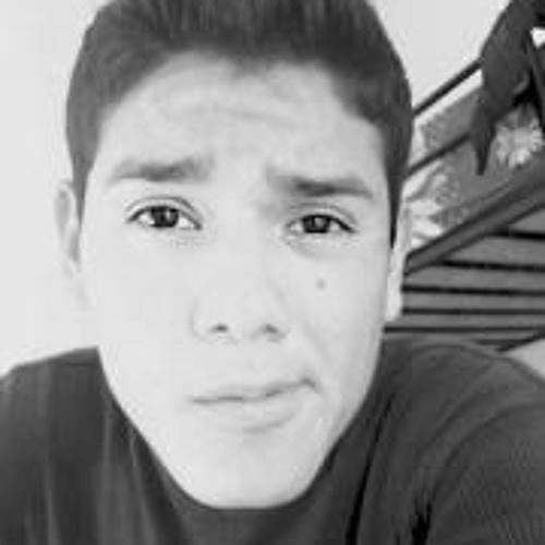 Rosendo Gonsalez Salazar's avatar