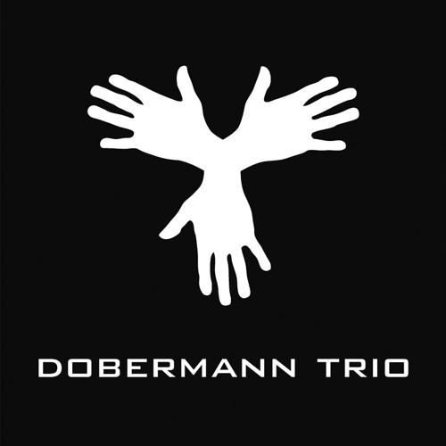 DOBERMANN TRIO's avatar