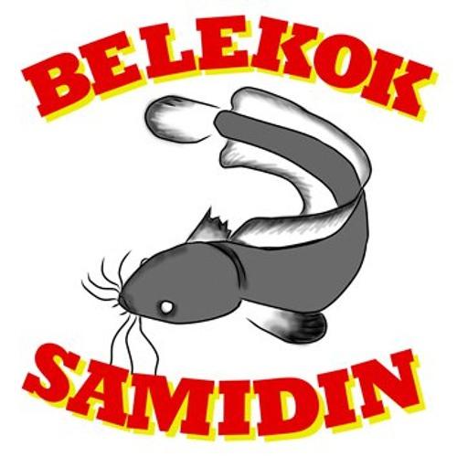 belekok samidin's avatar