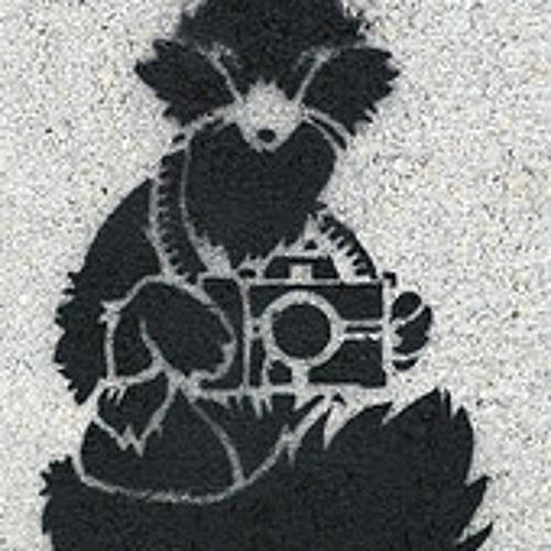 trust a fox photography's avatar