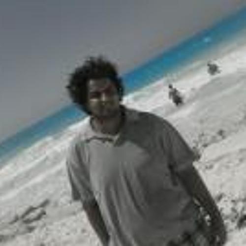 Mahmoud Zaghlul's avatar
