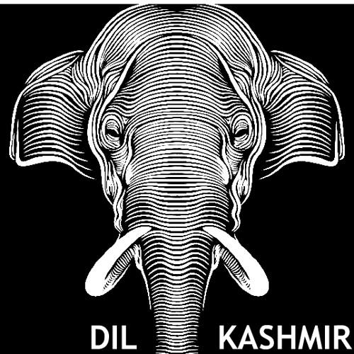DIL KASHMIR's avatar