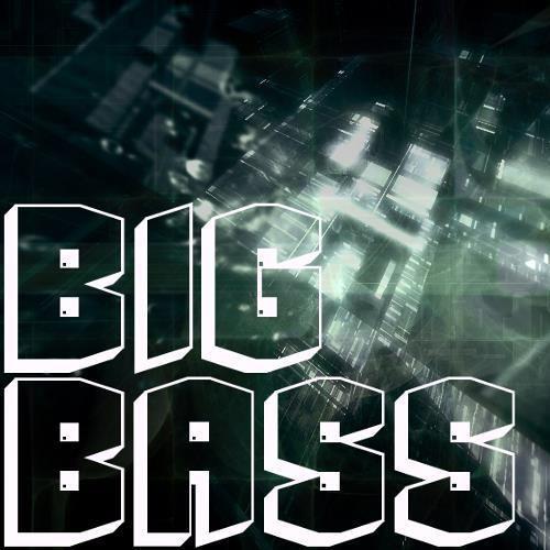 Big Bass Promotion's avatar