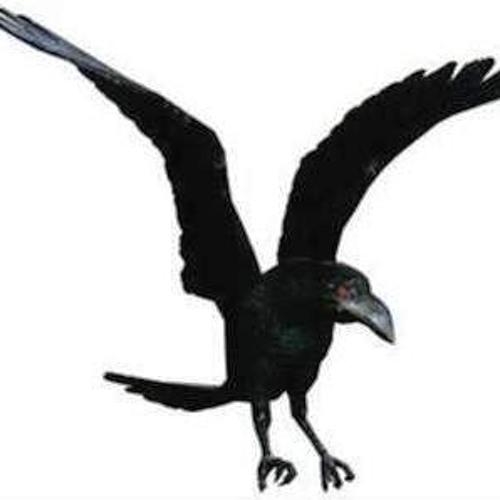 pacary13's avatar