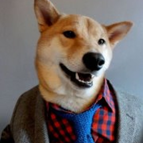 Charles Provost's avatar