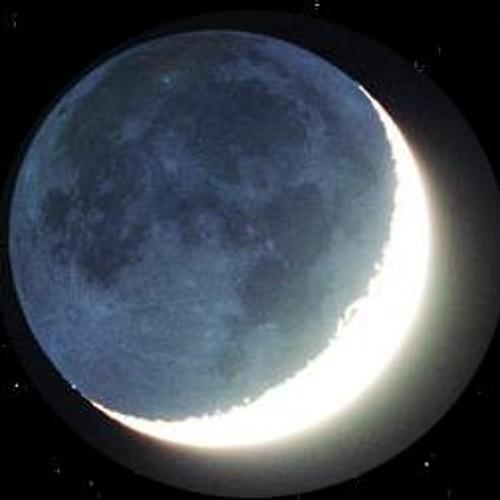 Lunar Descent's avatar