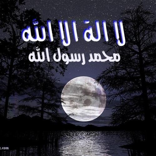 Walid Ahmed Shehata's avatar