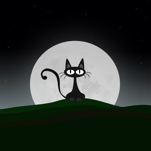 sara velvet's avatar