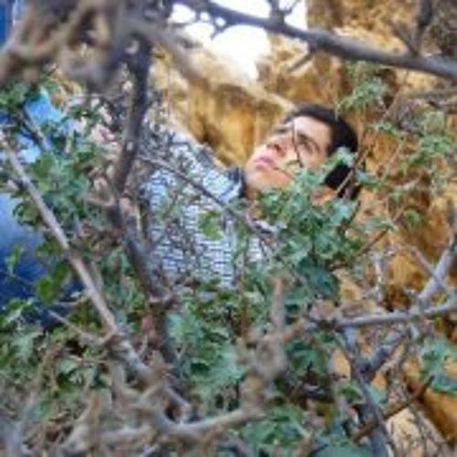 Mohammad Zahmat Pishe's avatar