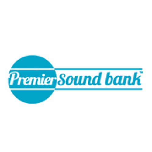 Premier Sound Bank's avatar