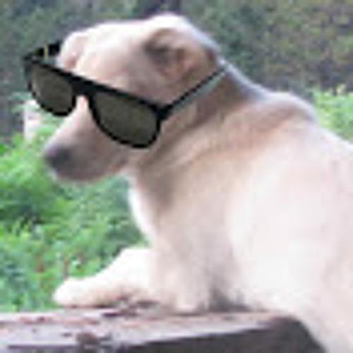 cybersasho's avatar