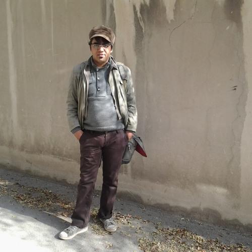 Hamid Malekzade's avatar