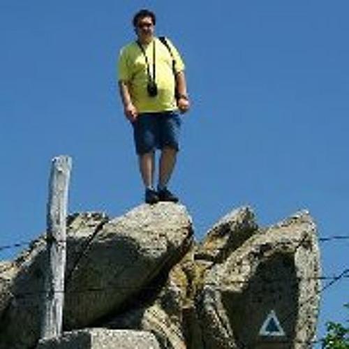 Cristian Ion Roman's avatar