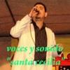 Mi Viejo -  Vicente Fernandez (Tributo a los grandes) Portada del disco