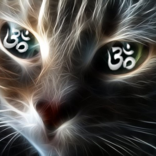 Mimis Gkampranis's avatar