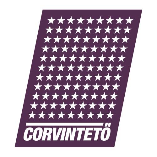 Corvinteto's avatar
