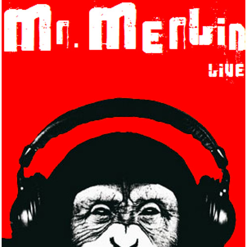 Mr. Merlin *live*'s avatar