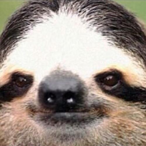 bellaclap's avatar
