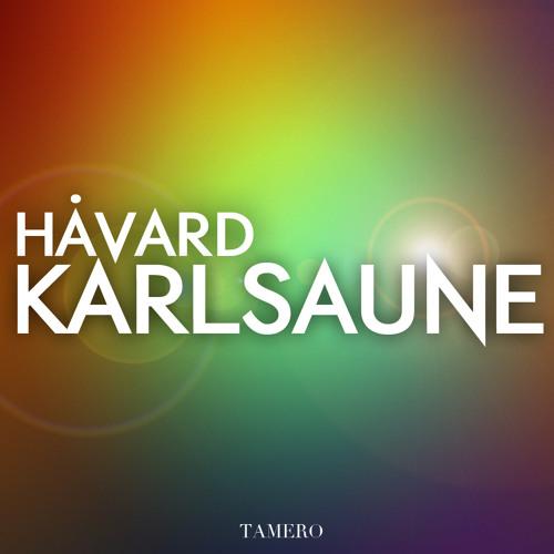 Lazy Rich - Damage control (Håvard Karlsaune Remix)