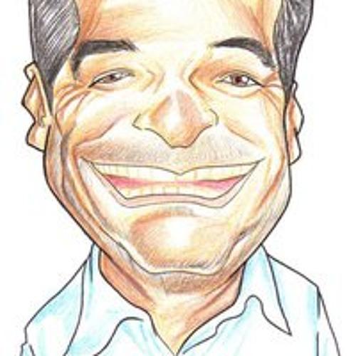 Renato Ramos de Quadros's avatar