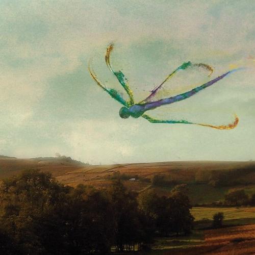 Fly Dragonfly's avatar