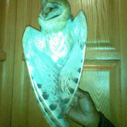 junotone Owlproduxionz's avatar