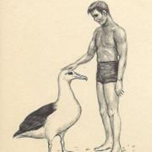 Barnacle Albatross's avatar