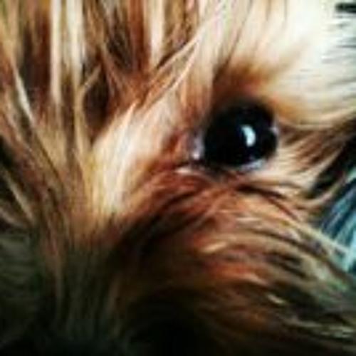 Brenda Lisiotti's avatar