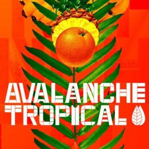 avalanchetropical's avatar