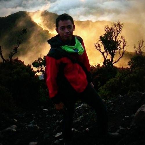 fredysetiawan216's avatar