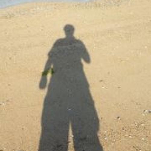 Cee Ti Pee Arr's avatar
