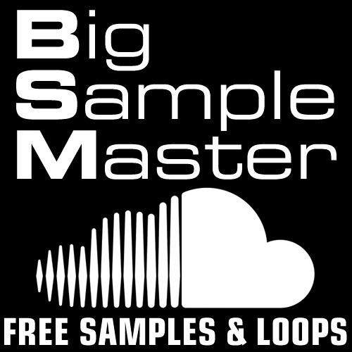 Big Sample Master's avatar