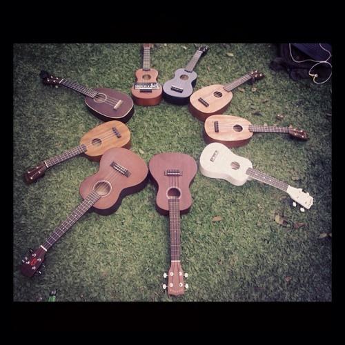 Kuda feat The Ukulele Syndicate - Waterfall (Stone Roses ukulele cover)