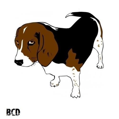Beagle Class Destroyer's avatar