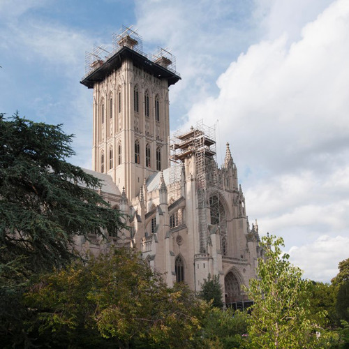 National Cathedral's avatar