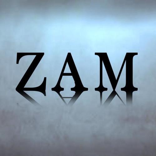 Zam (Producer)'s avatar