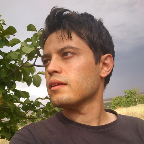 pooyaroohi's avatar